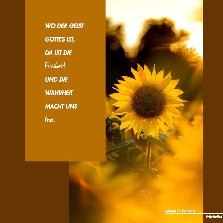 Wo der Geist Gottes ist, da ist Freiheit!