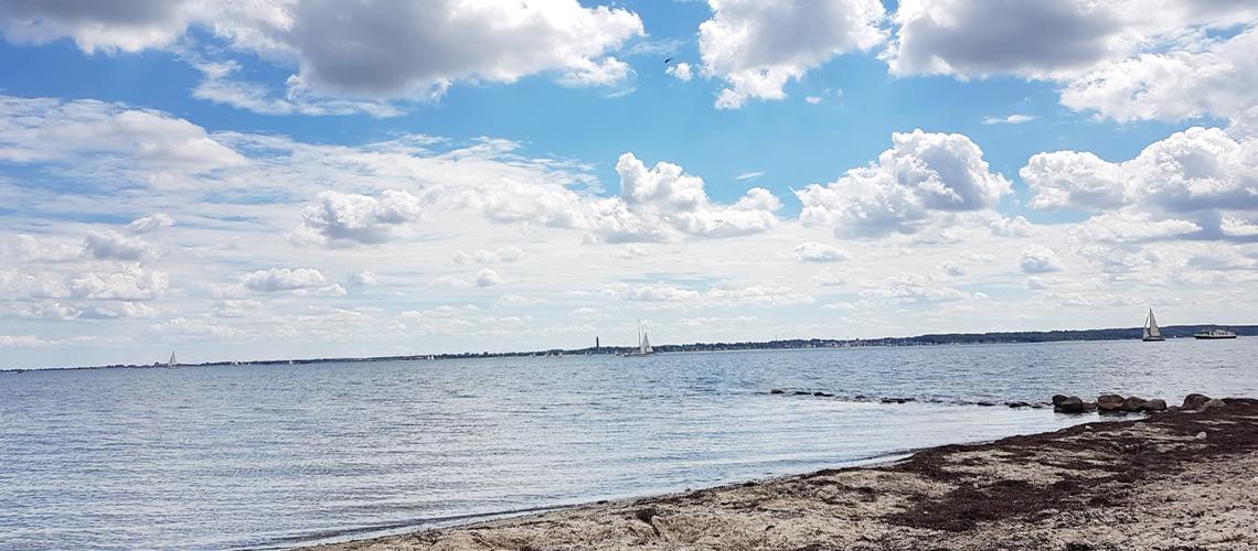 Rauchmelder Alarm, Strandgespräch - Wochenrückblick #2