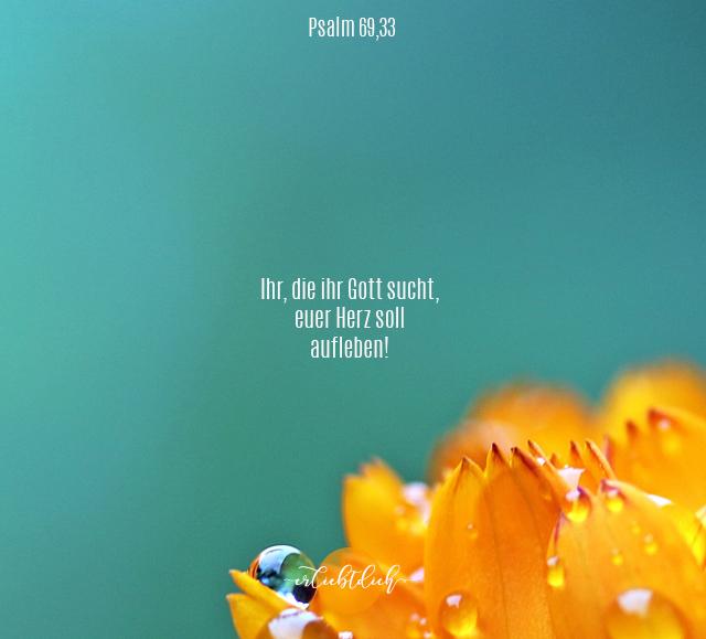 Bibelsprüche für den Alltag - Psalm 69,33