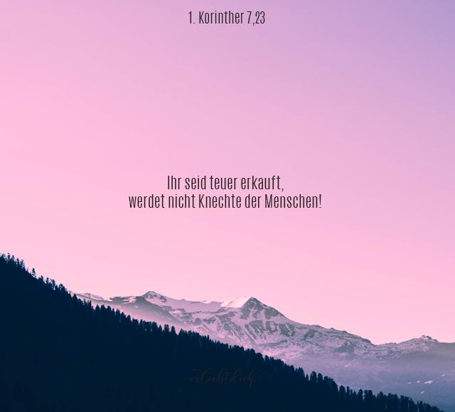 Bibelsprüche für den Alltag - 1.Korinther 7,23