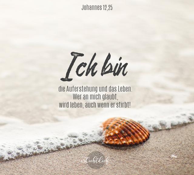 Bibelsprüche für den Alltag - Johannes 11,25