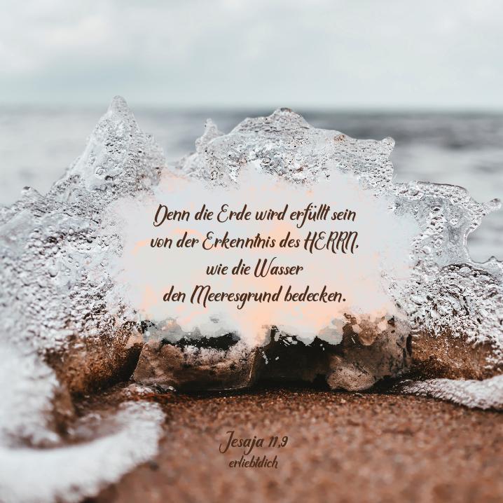 Bibelsprüche für den Alltag - Jesaja 11,9