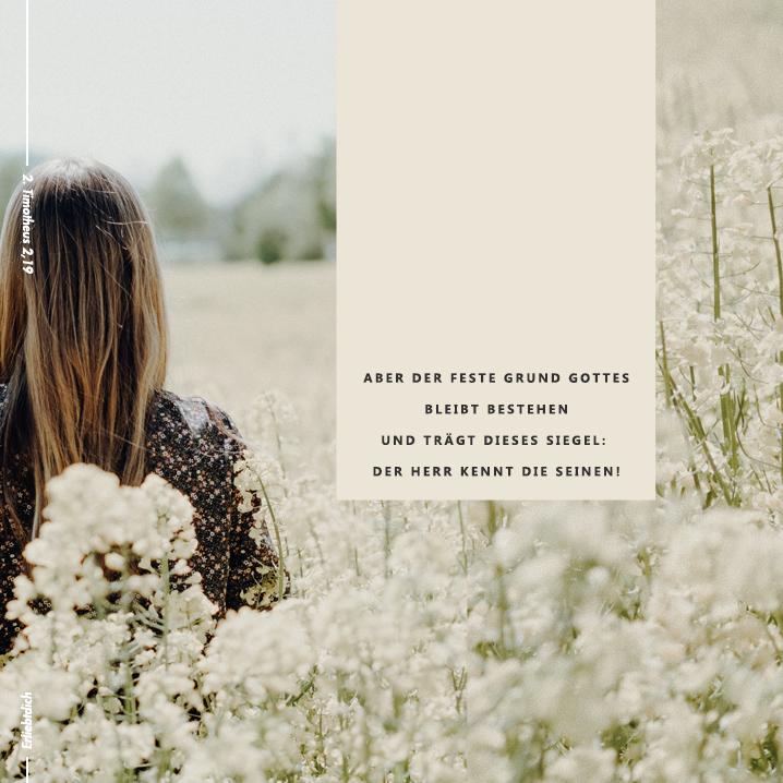 Bibelsprüche für den Alltag - 2. Timotheus 2,19