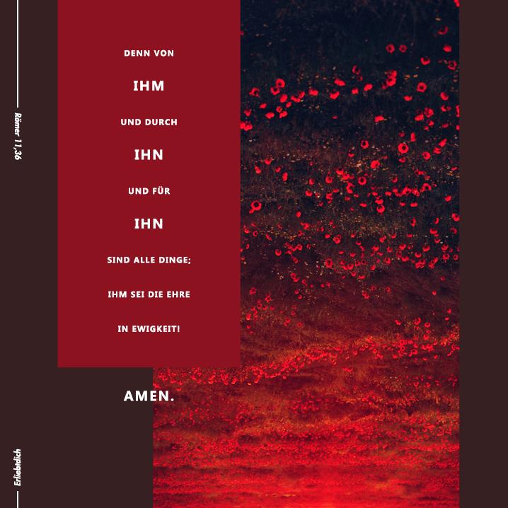 Bibelsprüche für den Alltag - Römer 11,36