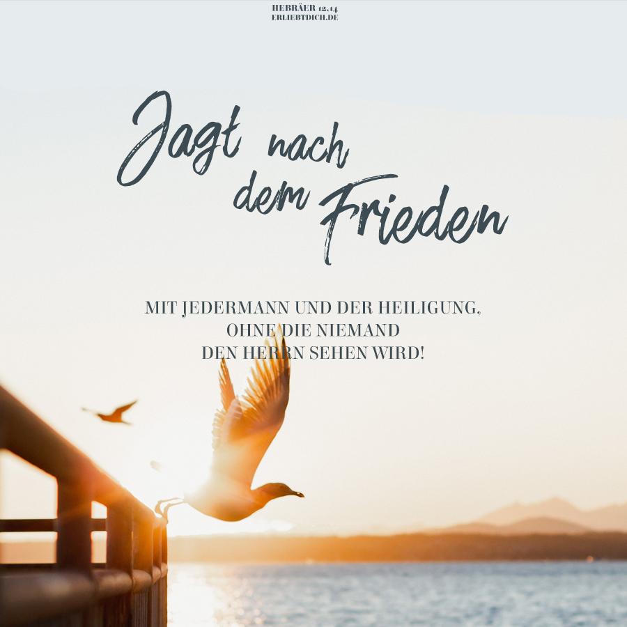 Ohne Gott wird es niemals Frieden auf der Welt geben!