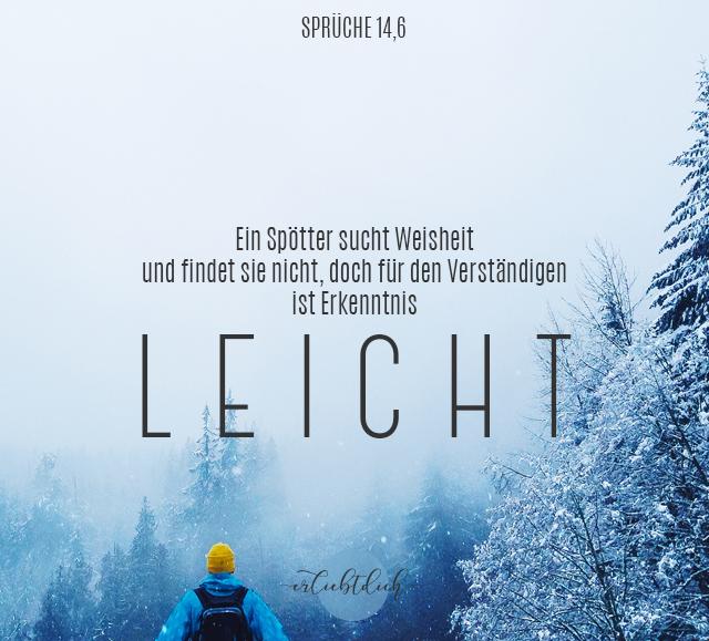 Bibelsprüche für den Alltag - Sprüche 14,6