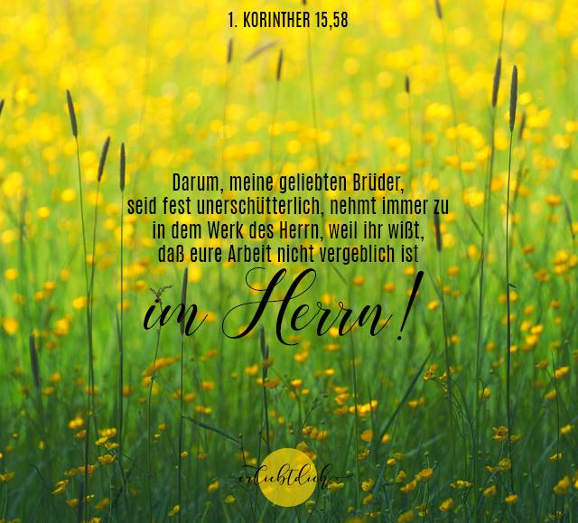 Bibelsprüche für den Alltag - 1. Kor. 15,58