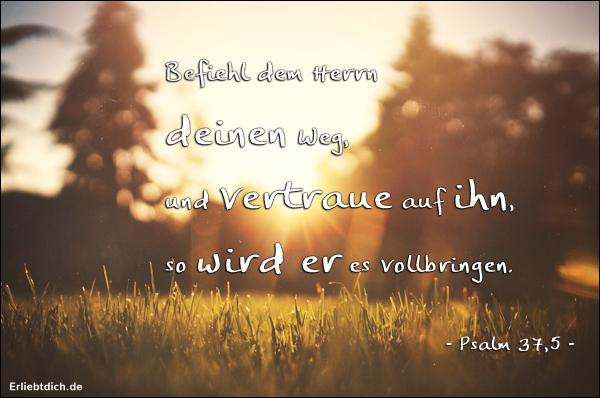Schöne Psalme